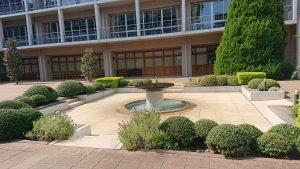 静かな中庭の泉