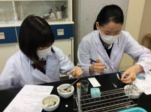 光合成の実験1